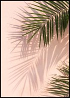 Pink Wall Palms Poster