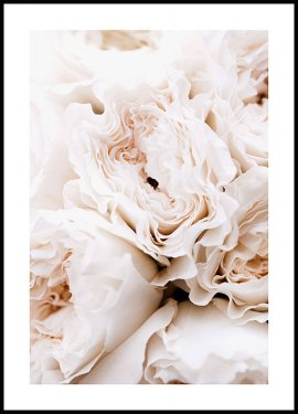 Blossoming Roses Poster
