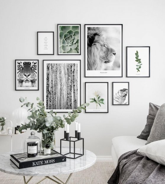 Gallery wall beautiful animal nature posters